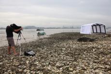 Mapping@Lau Fau Shan Oyster Field